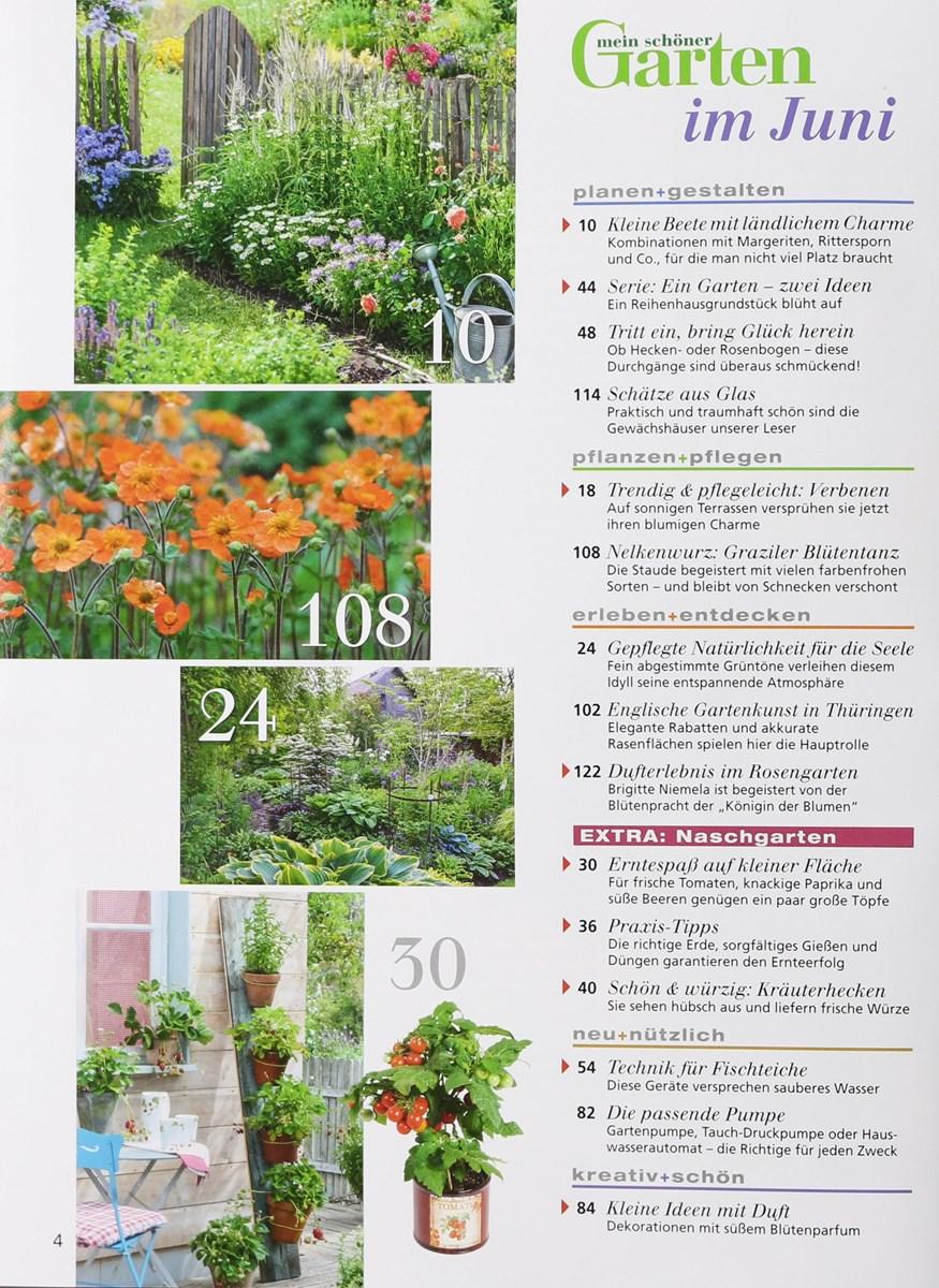 Mein Schöner Garten 62017 Zeitungen Und Zeitschriften Online